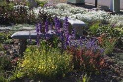 Dekoracyjny ogródek przed domem